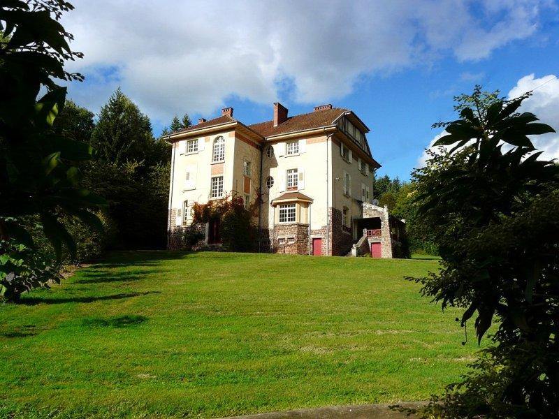 Achat Vente : Château � acheter � badonviller ()
